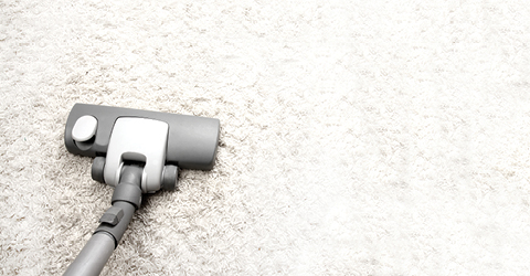 View Our Complete Guide to Carpet Care
